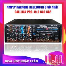 Ampli karaoke Amply nghe nhạc gia đình BLUETOOTH Cali.D&Y PRO-19.6D