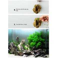 Keo dán rêu thủy sinh (01 Tuýp)
