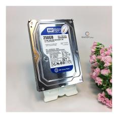 HDD 250G Western ( Blue ) Máy tính để bàn. Ổ cứng WD 250gb / 320gb / 500gb / 1TB. Bảo hành 2 năm.
