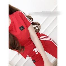 Bộ quần áo thể thao nữ 3 sọc B819