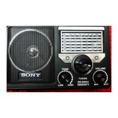Đài FM, radio, Máy Nghe Nhạc Đa Năng, Thẻ Nhớ, USB Sony SW-999 Sony SW-999AC