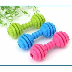 Xương gặm sạch răng cho chó – Xương đồ chơi sạch răng cho chó – Đồ chơi cho chó – ĐỒ CHƠI 004