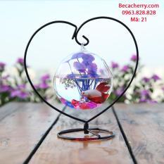 Bể cá mini trái tim 21 ( Tặng kèm combo phụ kiện trang trí )
