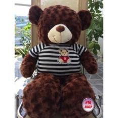 Gấu Bông Teddy Màu Nâu – Khổ vải 1m cao 80cm DH01