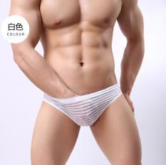 Quần lót bikini lưới kẻ sọc sexy – 638