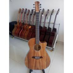 Đàn guitar Acoustic DG180JD natural