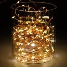 Đèn dây kẽm 10m 100 led trang trí noel dùng pin Thiên Mã (tùy chọn mẫu)