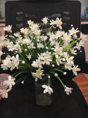 Hoa thủy tiên siêu xinh HTT-35 (1 cành 24-28 bông hoa) – Hoa giả- hoa lụa cao cấp – Hoa để bàn – Hoa để văn phòng