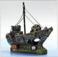 Con tàu đắm bị rêu phủ