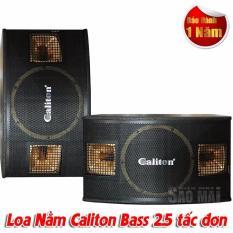 Loa Karaoke, Nghe Nhạc Caliton bass 2.5 tấc đơn thùng sơn