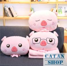 Creative cute hand warmer office nap pillow cold air conditioning blanket sleeping quilt dual-use cushions pillow piggy