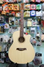Guitar acoustic [ Dây Sắt ]