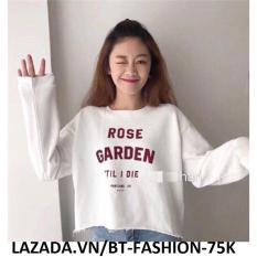 Áo Thun Nữ Kiểu Crop-Top (Hở Eo) Thời Trang Hàn Quốc Mới – BT Fashion (AK)