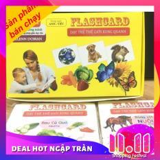 Bộ thẻ học thông minh Flash Card cỡ to 14 chủ đề (280 thẻ) cho bé theo phương pháp giáo dục sớm Glenn Doman