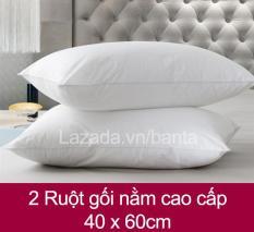 2 Ruột gối hơi (ruột gối nằm) kích thước 40x60cm mềm mại cho giấc ngủ say