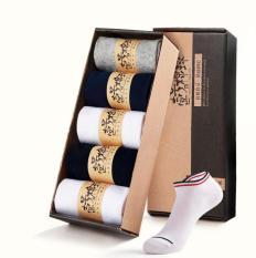 Bộ 5 đôi vớ nm cotton 2 sọc cổ thấp Vớ Store (5 màu) – A019
