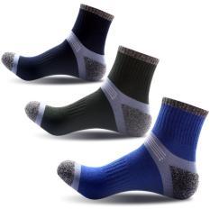 Bộ 3 đôi vớ nm cotton co cổ Vớ Store (3 màu) – A051