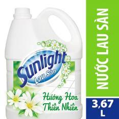 Nước lau sàn Sunlight Cif hương Hoa thiên nhiên can 3,8kg
