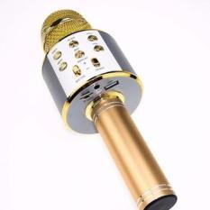 Micro Bluetooth Hát Karaoke WS-858 Loại 1