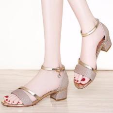 Giày gót vuông nữ kim tuyến quai ánh kim – LN1337
