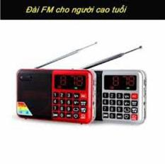 Đài FM, Radio AM, FM , MP3 (Đỏ hoặc bạc)