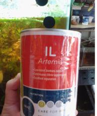 [Cá] Atermia inve 50g ( loại ấp nở ) Artemia