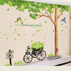 Combo 2 decal dán tường cay che bóng mát và xe hoa