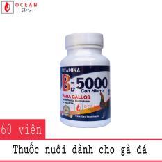 Thuốc nuôi bổ sung vitamin cho gà đá – Vítamina B12 5000