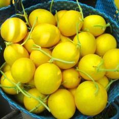 Gói 10 hạt giống dưa lê hồng kim