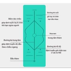 Thảm YOGA ĐỊNH TUYẾN TPE 2 lớp tặng túi và dây buộc