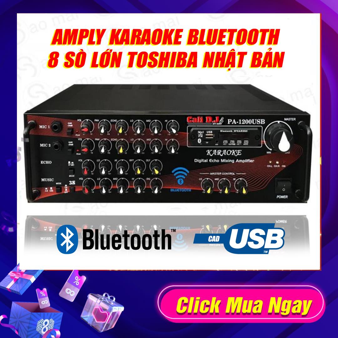Ampli karaoke Amply nghe nhạc gia đình BLUETOOTH CALI D.J / Cali.DY PA-1200USB