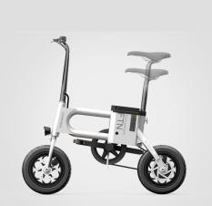 Xe điện Homesheel T2 crosswheel mẫu mới