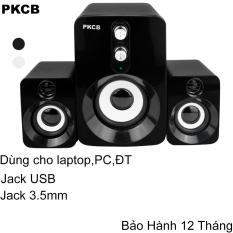 Loa nghe nhạc vi tính âm thanh vi tính bộ 3 loa như hình loa nghe điện thoại, máy tính PC, laptop giá rẻ chất lượng cao chính hãng PKCB94 Speakers loa Bass trầm cho phòng 30-50m2 cắm điện trực tiếp nam nữ đều dùng được