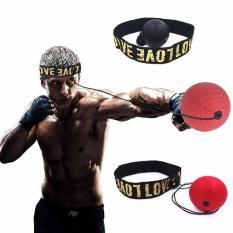 Bóng Luyện Phản Xạ Boxing Treo Đầu A029