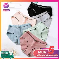 Combo 5 quần lót cotton kháng khuẩn đính nơ đen nhiều màu siêu tiết kiệm thương hiệu Vingo QL03 VNGO