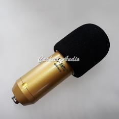 Bông lọc micro thu âm ( 1 cái )