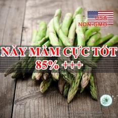 30h Hạt Giống Rau Măng Tây Washington (Asparagus officinalis)