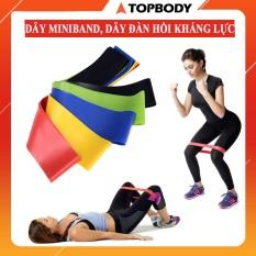 Dây miniband, dây đàn hồi kháng lực tập cơ mông đùi – bộ 5 dây full box TOPBODY – MIBAND001