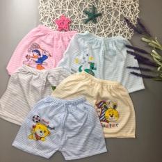 Set 5 quần đùi cotton HỌA TIẾT KẺ đẹp cho bé 3-12kg-Q8