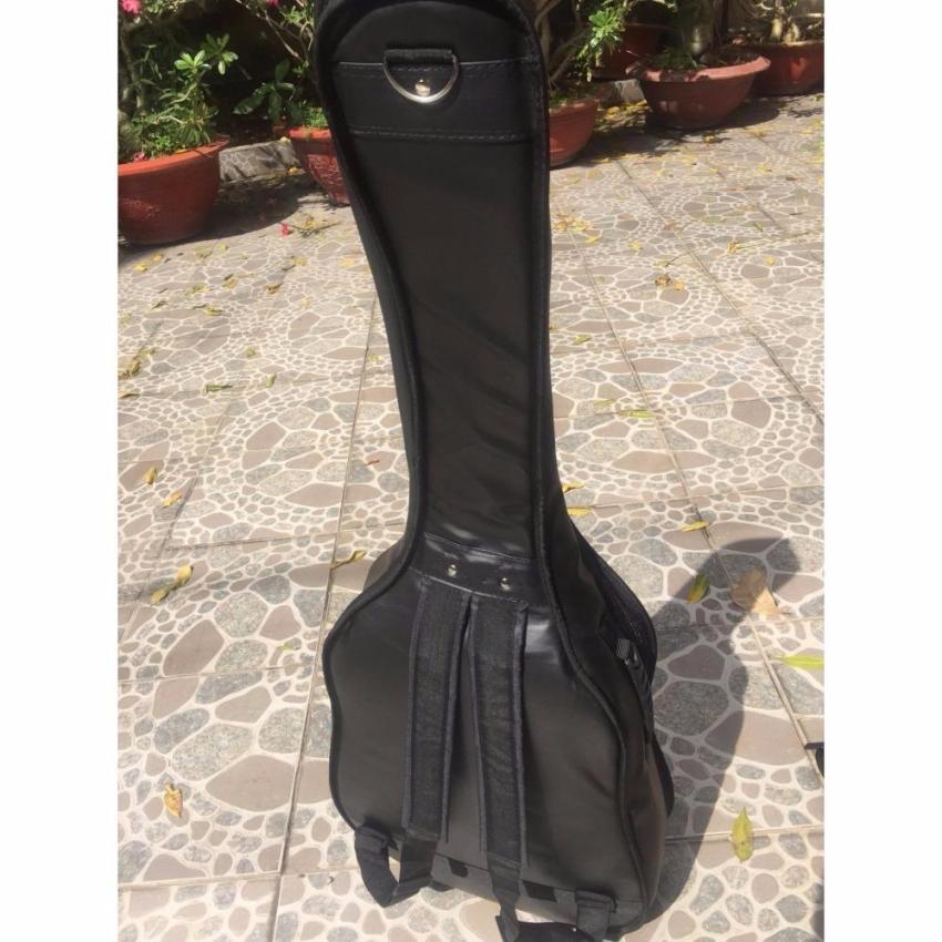 Bộ Đàn Guitar Acoustic màu nâu hạt dẻ VAKTN1600 + bao da 3 lớp + 2 picks Alice