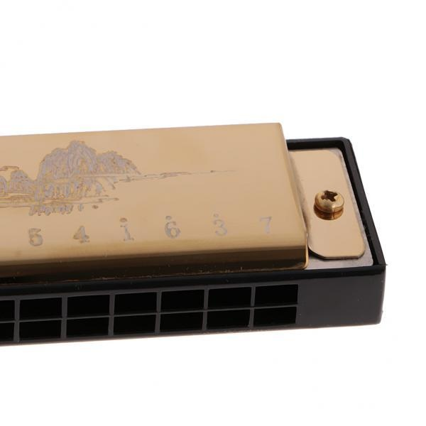 BolehDeals 24 Holes 48 Tone C Key Harmonica Tremolo Harmonica Mouth Organ Gold - intl