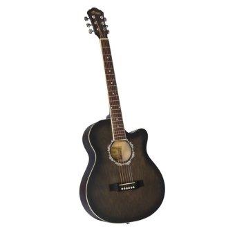 Đàn guitar acoustic Vines