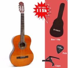 Đàn Guitar Classic RG3920 cho người mới tập chơi