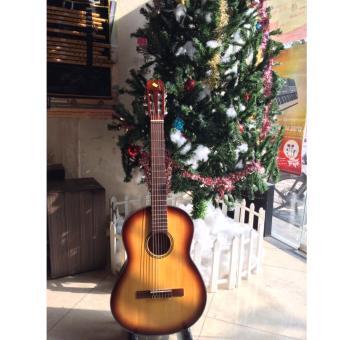 Đàn guitar classic SCG02VS