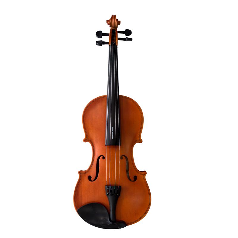 Đàn Violin Vines