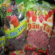 Bộ 2 gói kẹo dâu tây và dâu tằm Đà Lạt loại 200g