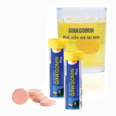 Chi tiết sản phẩm Bộ 2 Tuýp sủi hoạt huyết GINKGOMIN Plus xua tan căng thẳng ( Tuýp 10 viên )