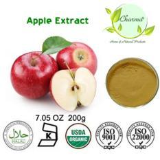 Chiết xuất táo dạng bột 200g