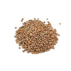 Đậu lăng nâu nguyên hạt Ấn Độ 250g