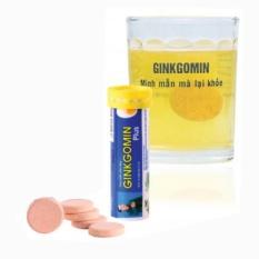GINKGOMIN PLUS – Viên sủi hoạt huyết giúp xua tan căng thẳng ( Tuýp 10 viên )